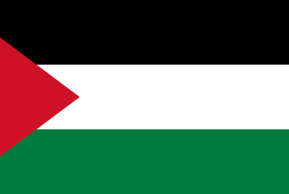 Libération de Ahed Tamini  et retour sur la Palestine