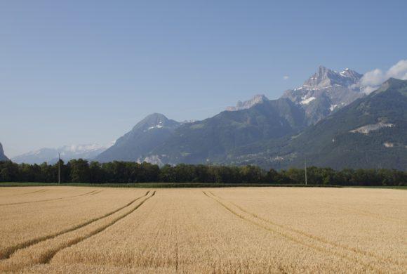 Pour une transition écologique des parcelles agricoles et viticoles communales